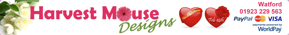 Harvest Mouse Designs Florist Watford - Valentines Day Flowers